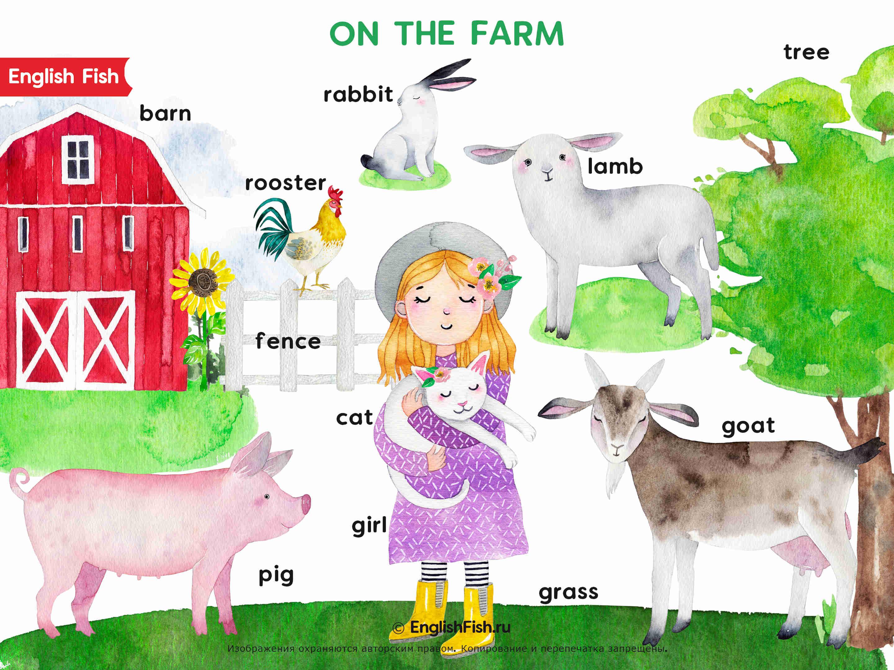 Английский в картинках для детей - Животные на ферме